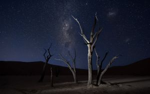 Deadvlei Milky Way.jpg
