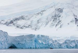 Anvers Island, Antarctica.