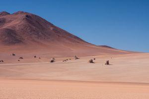 Altiplano, Bolivia.